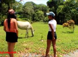 سكس حصان مع مراة جريه