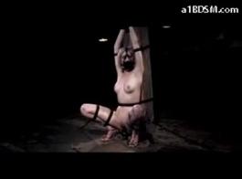 صور سكس زنوج صورمتحركة