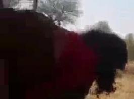 سكس مصري قذف داخل الكس فيديو